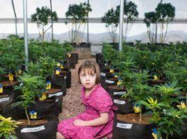 Charlotte Figi - Charlotte Figi Marihuana Medicinal