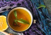 Té de Marihuana - Beneficios del Té de Marihuana para la Salud