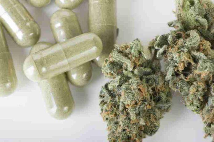 Marihuana Medicinal como Medicamento - Menos Opiacios con la Marihuana