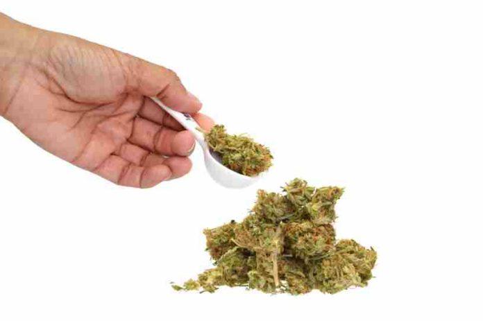 Efectos Marihuana Cuerpo Humano - Efectos Marihuana Medicinal