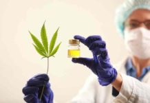 Marihuana como Antiinflamatorio - Marihuana para el Dolor