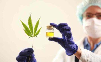 Marihuana como Antiinflamatorio - Marihuana para los Dolores