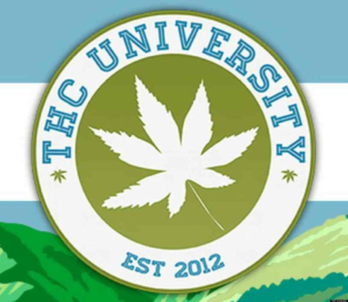 Clases de Marihuana en EEUU - Cursos de Marihuana en EEUU