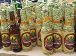 Cerveza de Marihuana - Cerveza de Marihuana en California