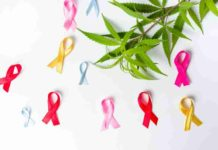 Marihuana Cáncer - Beneficios de la Marihuana frente al Cáncer