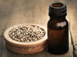 Semillas de Marihuana - Buenas Semillas de Marihuana para Cultivar