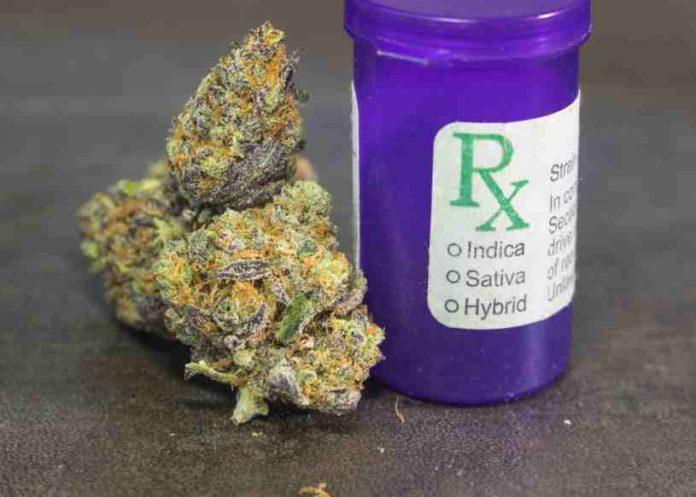Perú Marihuana Medicinal - Perú Aprueba uso Marihuana Medicinal