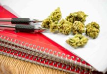 Cursos de Marihuana - Estudios sobre Marihuana Medicinal