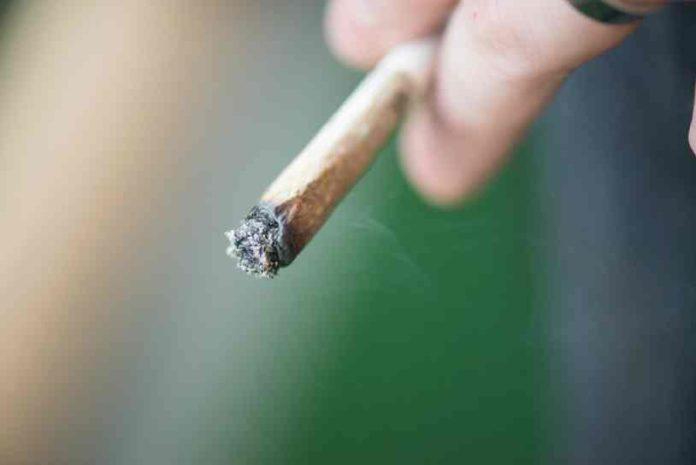 Consejos Colocón Marihuana - Consejos Blancazo Marihuana