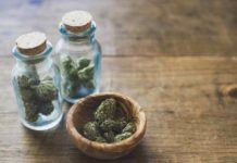 Marihuana Ayuda en el Cáncer - Pacientes Cáncer Marihuana Ayuda