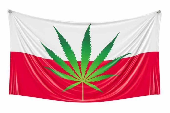 Marihuana Medicinal en Polonia - Polonia Marihuana Terapeutica