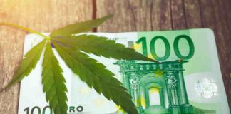 Venta de Marihuana - Ingresos Fiscales Venta Marihuana