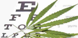 THC de la Marihuana Ayuda en la Visión - THC mejora la Visión