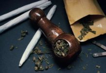 Marihuana Cerebro - Marihuana Mejora Funciones Cerebrales