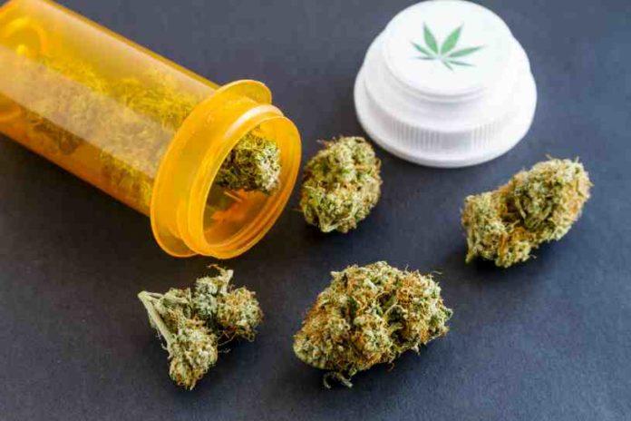 Perú Marihuana Terapéutica - Perú Aprueba uso Marihuana Medicinal