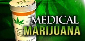Marihuana sus Efectos en Duda - Efectos de la Marihuana en Duda