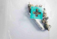 CBD Mejora el Estado de Depresión - CBD mejor que los Fármacos para la Depresión