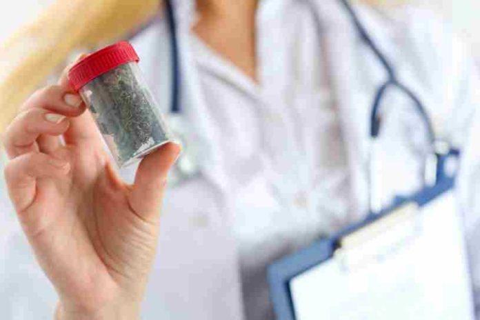 Marihuana Ayuda a Pacientes con Cáncer - Marihuana Medicinal contra el Cáncer