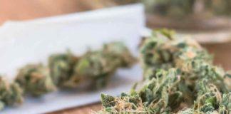 Ventajas de Fumar Marihuana - Desventajas de Fumar Marihuana