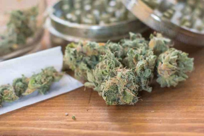 Estereotipos Consumidores Marihuana - Mitos Consumidores Marihuana