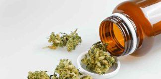 Italia Marihuana Medicinal - Legalización Marihuana Medicinal Italia