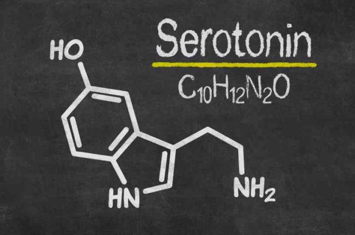 Relación Marihuana Serotonina - Complementarios Marihuana y Serotonina