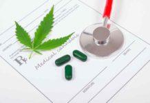 Marihuana Resto del Mundo - Marihuana Medicinal