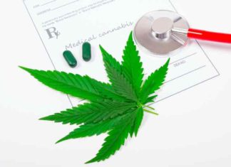 Marihuana Medicinal Enfermedades - Cannabis Medicinal Alivia