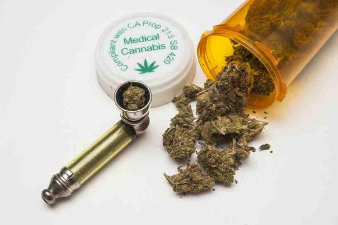 Raíces de las Plantas de Marihuana Medicinales - Raíces Medicinales