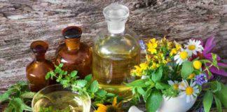 Plantas Medicinales Cannabinoides - Plantas con Cannabinoides