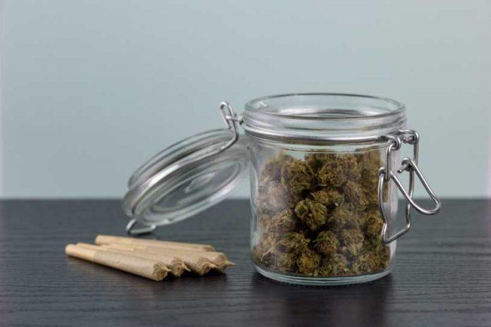 Propiedades Marihuana Bote - Tiempo Marihuana Bote Cerrado