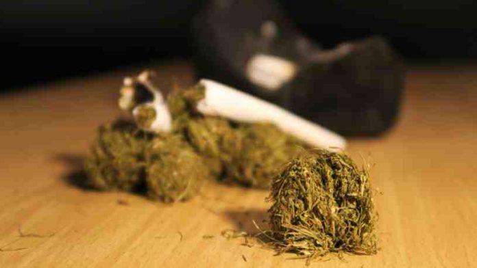 Reglas de los Fumadores de Marihuana - Los Marihuanos