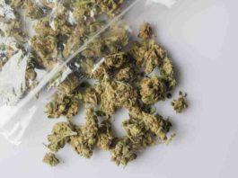 CBD Ayuda en la Psoriasis - Marihuana Ayuda en la Psoriasis