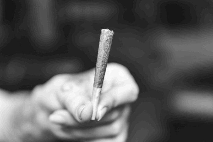 Efectos Marihuana Creepy - Potencia Marihuana Cripy