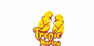 Semilla de Marihuana Tropic Marley - Semillas de MarihuanaTropic Marley