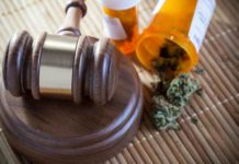 Estado Regular Marihuana Medicinal - Regular Marihuana el Estado