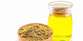 Obtener Aceite de Cáñamo - Cómo Extraer el Aceite de Cáñamo