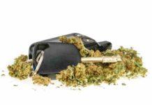 Marihuana al Volante - Analizar Marihuana y Conducción