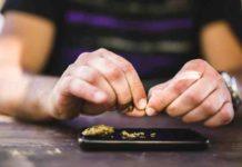 Efectos Marihuana Organismo - Efectos Marihuana Cuerpo