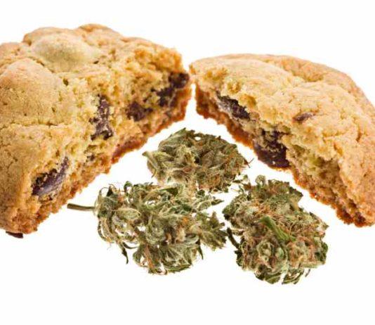 Errores Cocina Cannabica - Errores a la Hora de Cocinar con Marihuana
