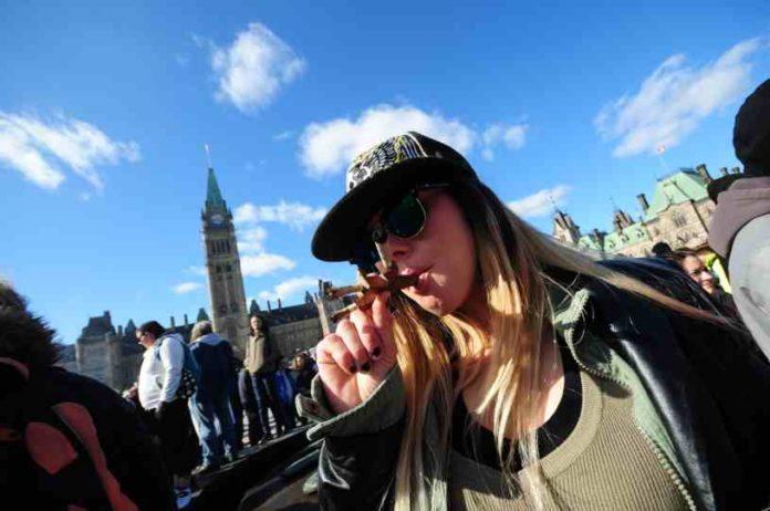 ¿Qué saber de los Marihuanos? - ¿ Qué saber de los Amantes de la Marihuana?