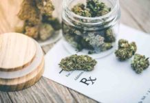 Marihuana para la Tos - Marihuana para los Resfriados