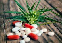 Qué NO Mezclar con la Marihuana - Sustancias que no hay que Mezclar con Marihuana