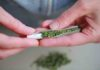 Papel de Fumar Marihuana - Papel para Liar Marihuana