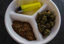 Espiritualidad con la Marihuana - Lado Místico de la Marihuana