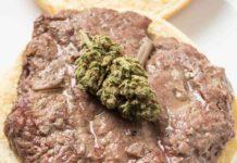 Hamburguesas de Marihuana - Hamburguesas Caseras con Marihuana