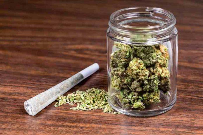 Consumo de Marihuana Aumenta - Adolescentes y el Consumo de Marihuana