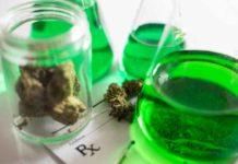 Como actúa el Aceite de Marihuana con la Melatonina