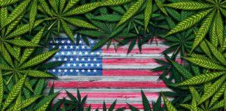 Estados para Legalizar la Marihuana - Nuevas Legalizaciones de la Marihuana