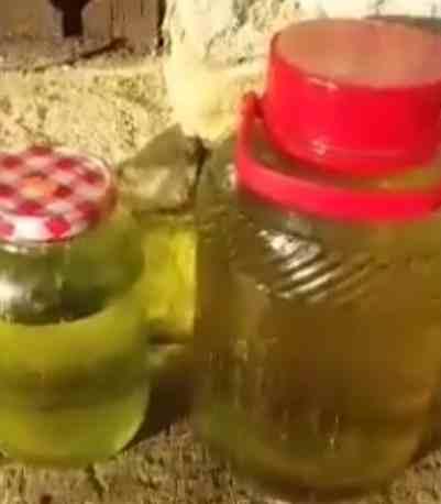 cómo hacer el feco o aceite de marihuana full spectrum